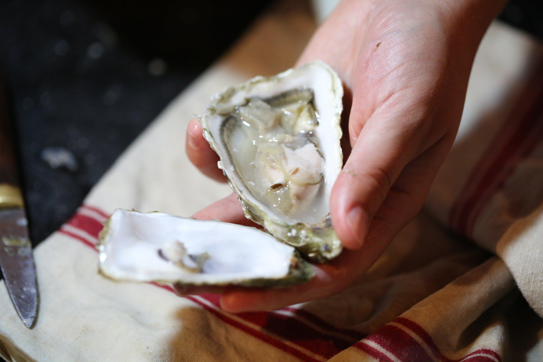 Photo principale de Comment ouvrir une huître ?